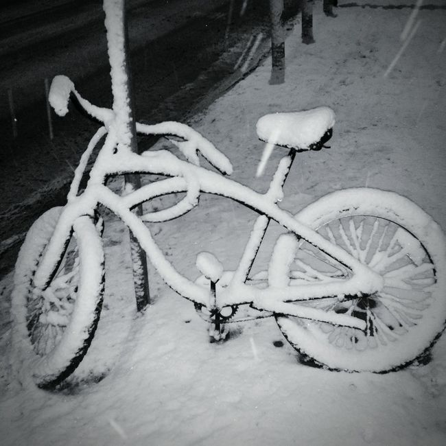 It's Cold Outside Frozen Bicycle Snow Snow Day Winter Wintertime Warsaw Zerodegrees Snowy Days... Poland Cycling City Life Cold Days Urban Lifestyle Urban Transportation Snow Covered WHiTE WORLD Blackandwhite