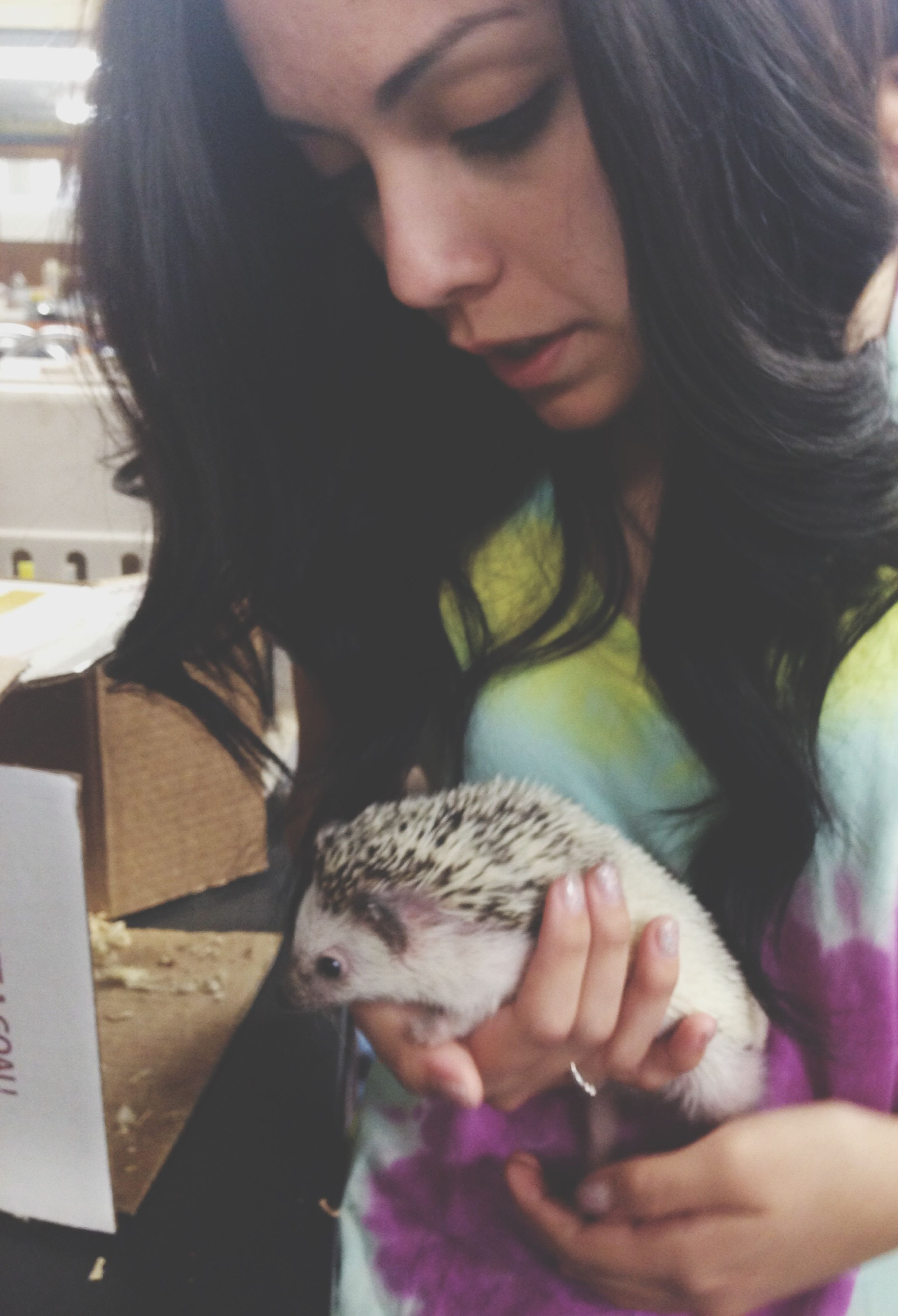 indoors, lifestyles, holding, person, leisure activity, animal themes, casual clothing, long hair, one animal, young women, young adult, midsection, headshot, focus on foreground, mammal, pets