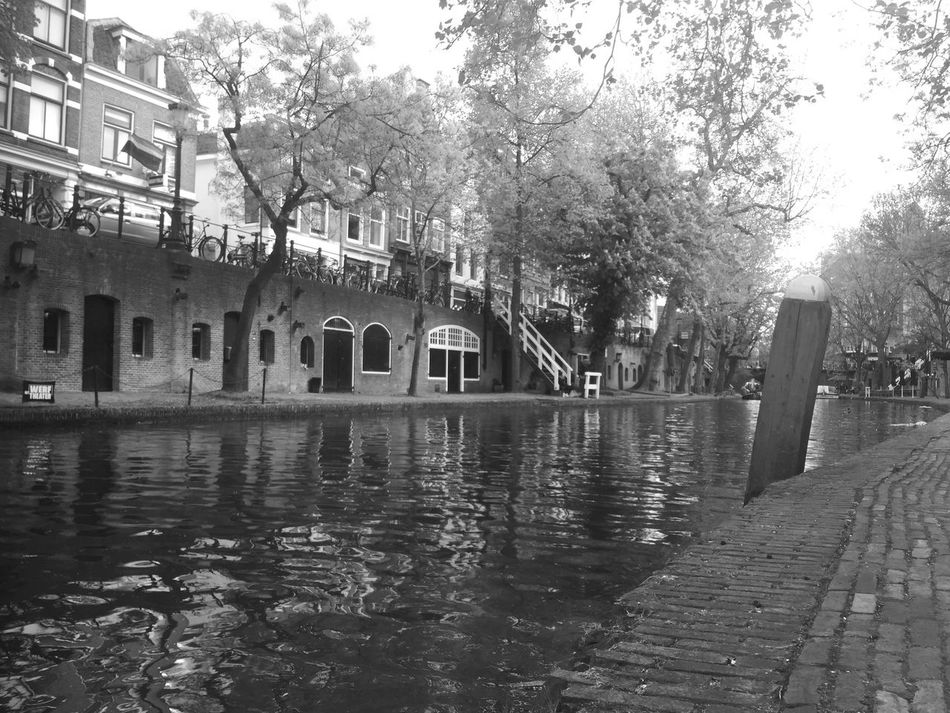 Architecture Building Exterior Built Structure City Day Nature No People Outdoors Sky Tree Water Eyeemphotography Eye4photography  Taking Photos Waterfront Canal Utrecht Trees Low Angle View Reflection Nature Photography Nature_collection Blackandwhite Monochrome Black And White