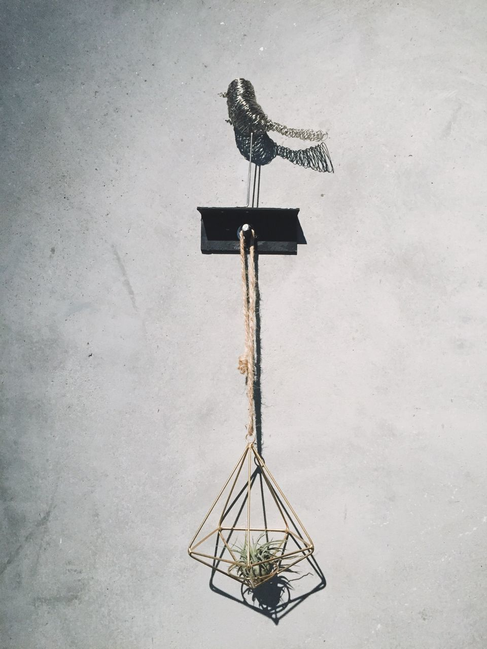 no people, weather vane, day, direction, hanging, outdoors, close-up, bird