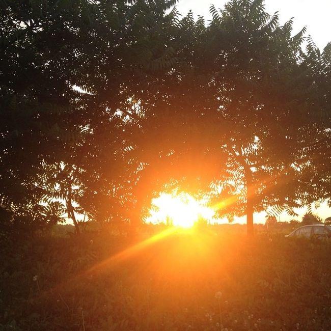 No filter needed for this sunset. @norfolktour @LongPointEcoAdv Travelingjj
