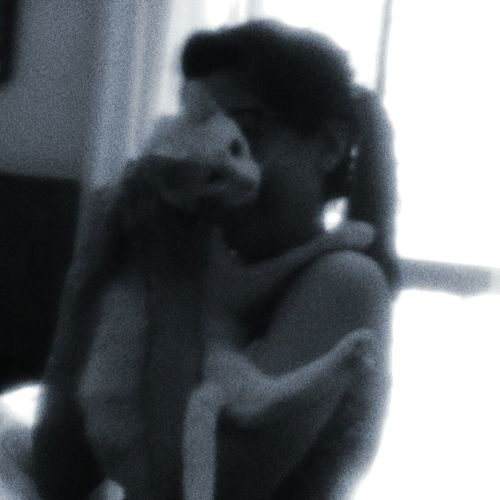 El abrazo que todo lo cura Cat l Cat♡ Cat Lovers Catoftheday Catsofinstagram Cute Cats Lovecats❤️ Lovecats Lovemycat Friends Friendship Friends ❤ Eddiethecat
