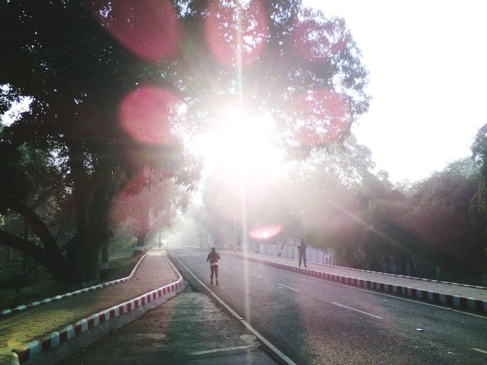 Morning Walk Morning Sunshine Vanishing Point