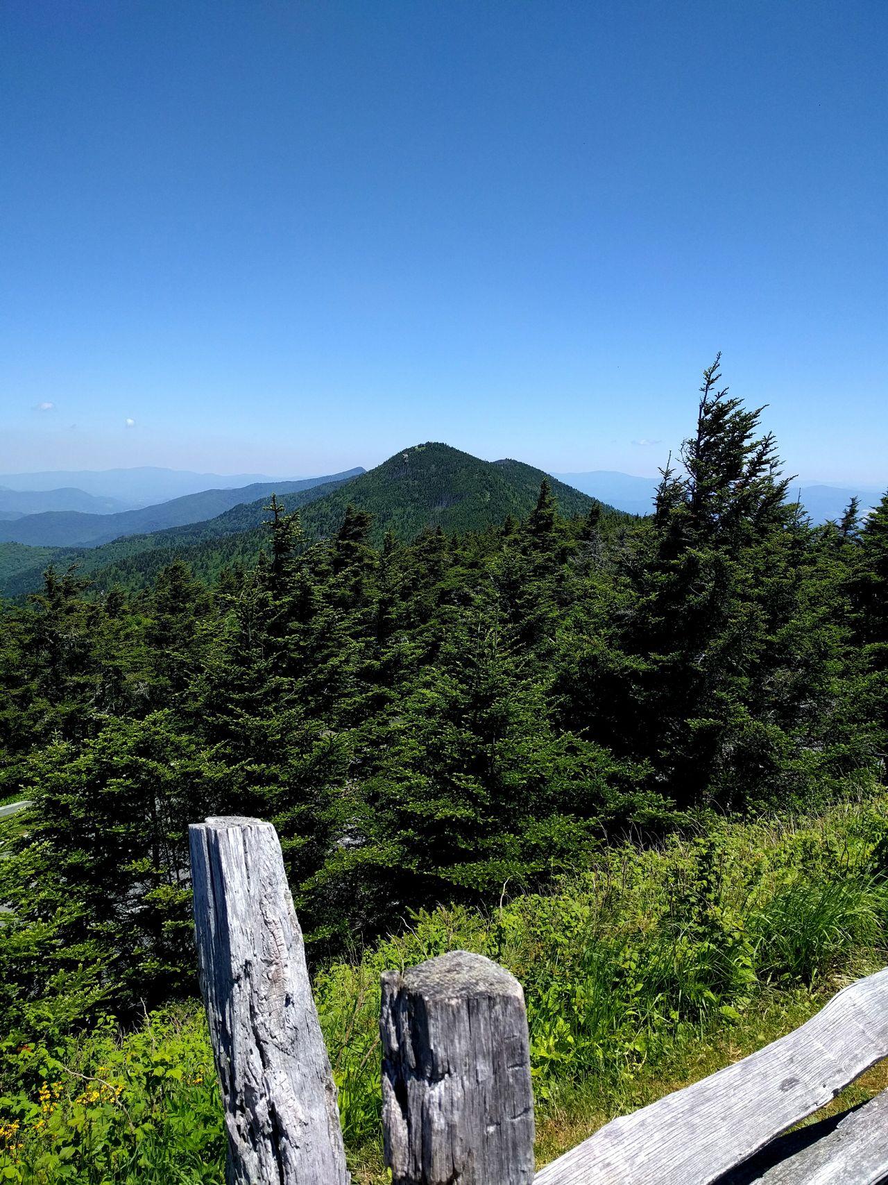 Mount Mitchell Hiking Mountains Outdoors