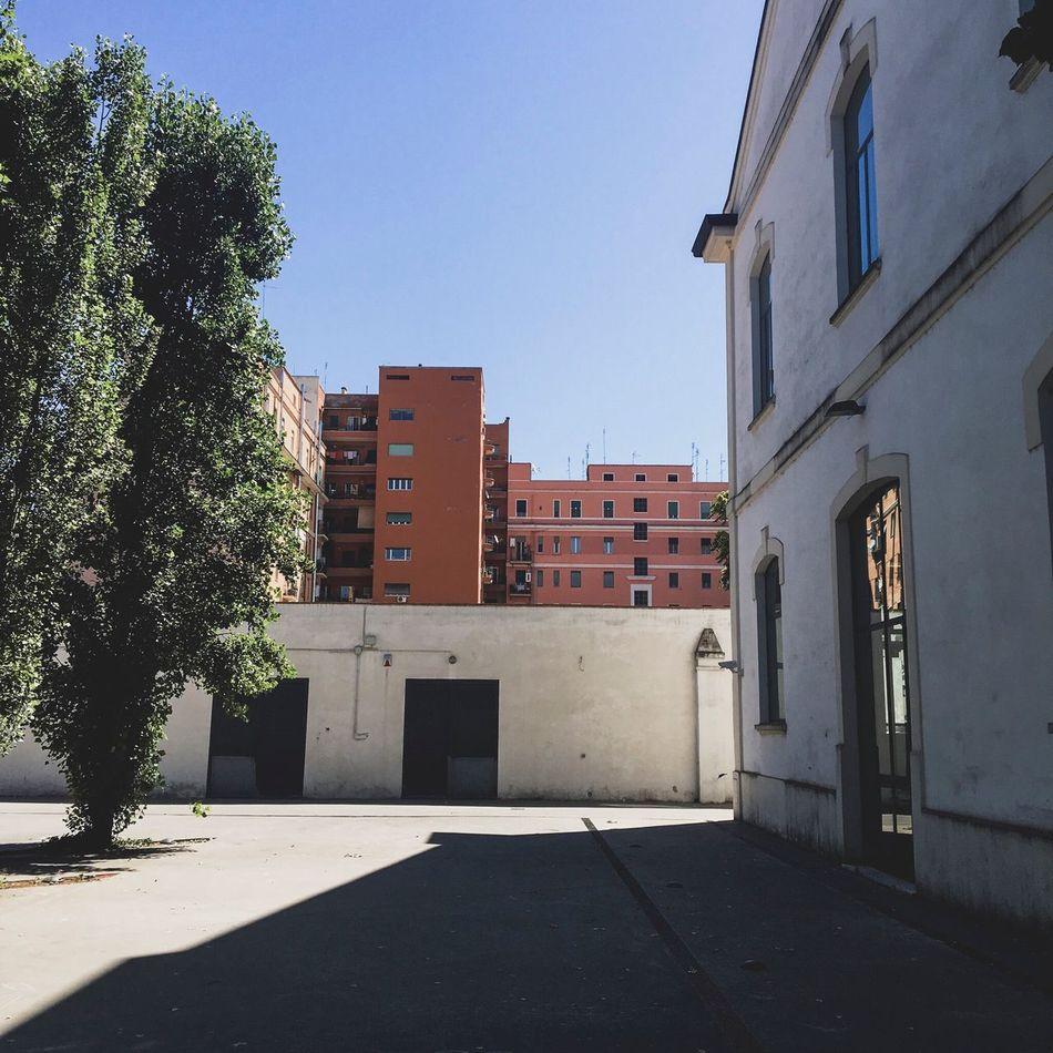 Architecture Clear Sky No People Building Exterior Day City Museum Museum Of Modern Art Maxxxi Rome Roma Colors Colour Of Life Delacruzfotografia David De La Cruz