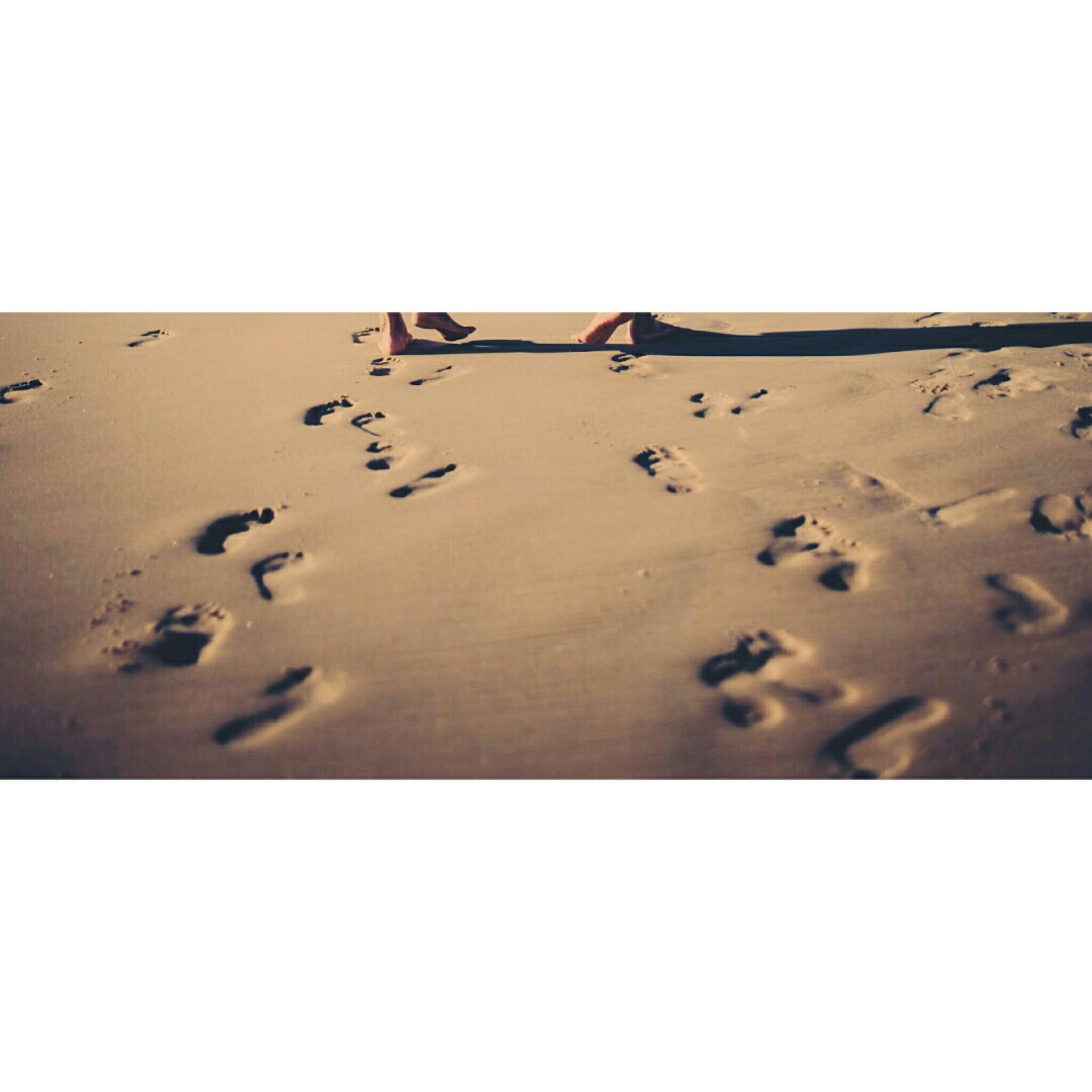 transfer print, copy space, clear sky, sand, beach, auto post production filter, shore, no people, day, sunlight, built structure, textured, outdoors, footprint, nature, pattern, shadow, close-up, sea, vignette