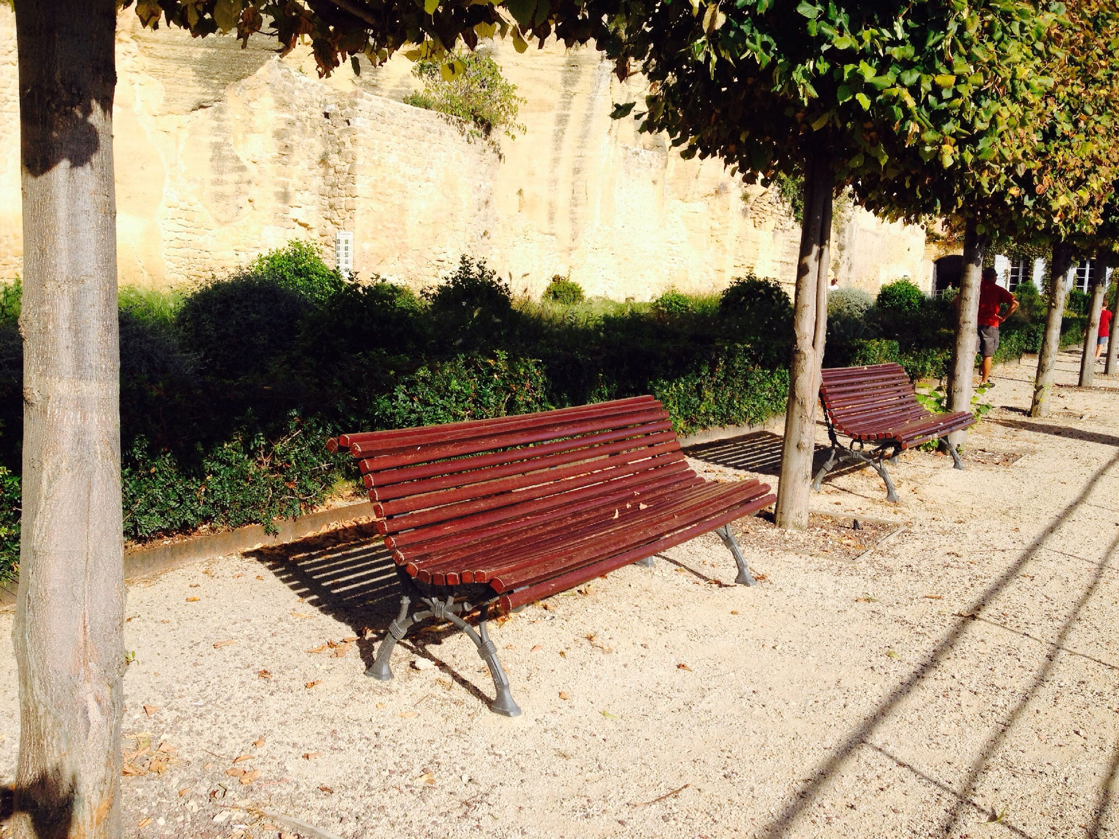 chair, bench, absence, empty, seat, park bench, wood - material, sunlight, tree, relaxation, park - man made space, day, shadow, outdoors, no people, furniture, front or back yard, sidewalk, nature, wooden