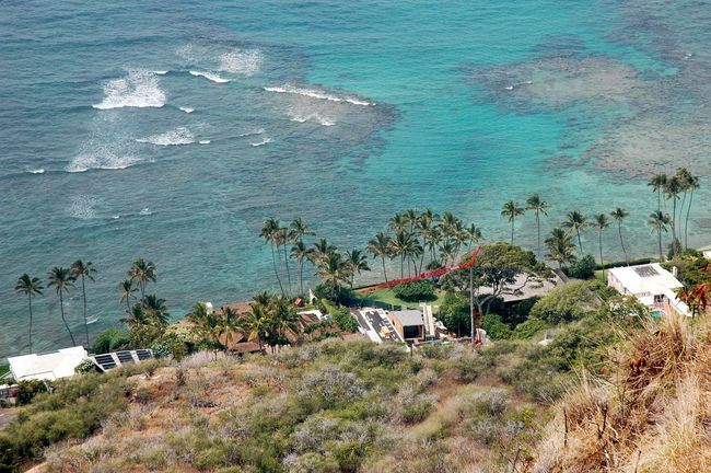 A Bird's Eye View of Diamond Head Beach Park Tranquil Scene Water Vacations Palm Tree Tranquility High Angle View Tourism Nature Travel Destinations Blue Scenics Sea Aerial View Vacations Honolulu  Non-urban Scene Beauty In Nature Outdoors Summer Green Color Coastal Beauty Coastal Landscape