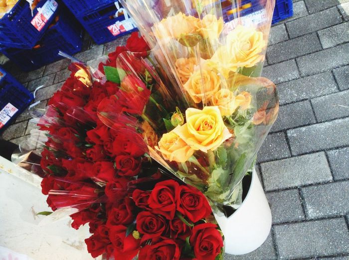 Beautiful fower Ever Since@veatrisha.me Flowers,Plants & Garden The Explorer - 2014 EyeEm Awards Hi&hello☺️❤️✌️💐🌼🌸👋