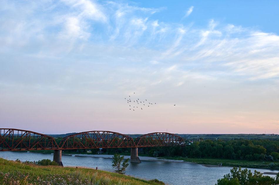 Birds Over the Bridge Bridge Cloud - Sky Clouds Landscape No People Outdoors Sky Water