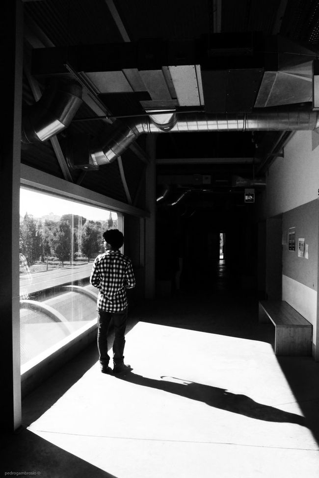 Architecture Architecture School Art School Built Structure Casual Clothing Day Design School Geometry Leisure Activity Light Modern Person Perspective Shadow Student Student Life Sunlight University Window Évora