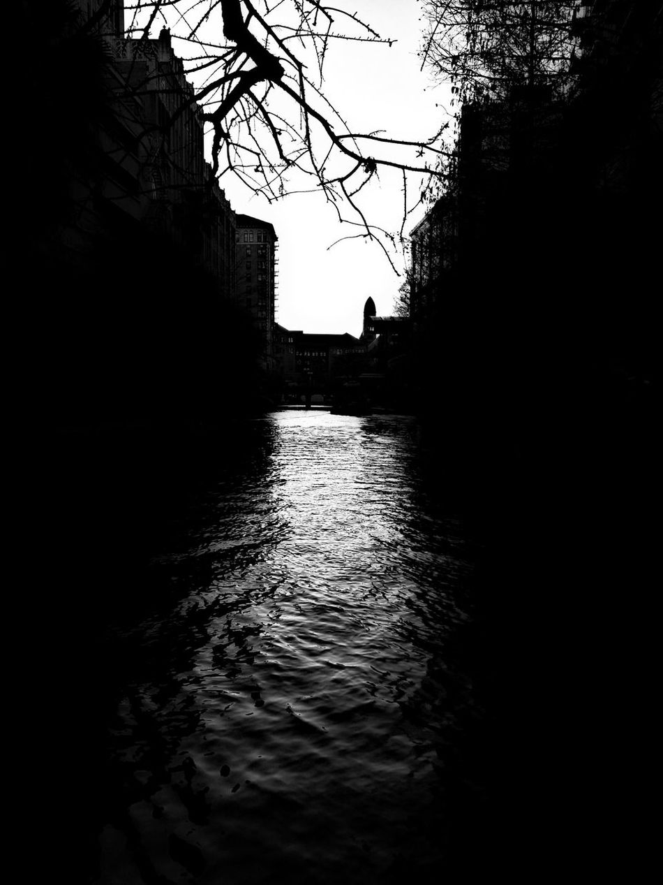 The River Walk in San Antonio! Water Nature Tree Sky No People Silhouette Outdoors Day Beautiful Myview Best  Photooftheday Texas City Tree Night Travel Destinations SanAntonioTexas Softglow Picsay Picsaypro  EyeEm Best Shots Eyeemcollection