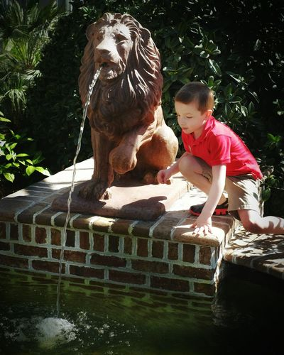 When your wish falls in the wrong place don't give up just help steer it to it's destiny. Wish Me Luck Making Wishes Kids Being Kids Check This Out Off The Beaten Path Destiny Pictureoftheday Botanical Garden What I Saw Wishing Well
