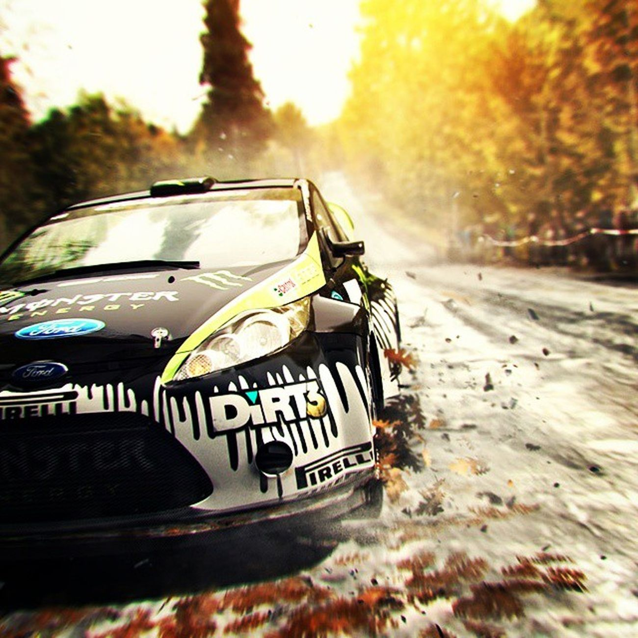 get some me dirty in it Dirt3 AJM Cars Rally Mud