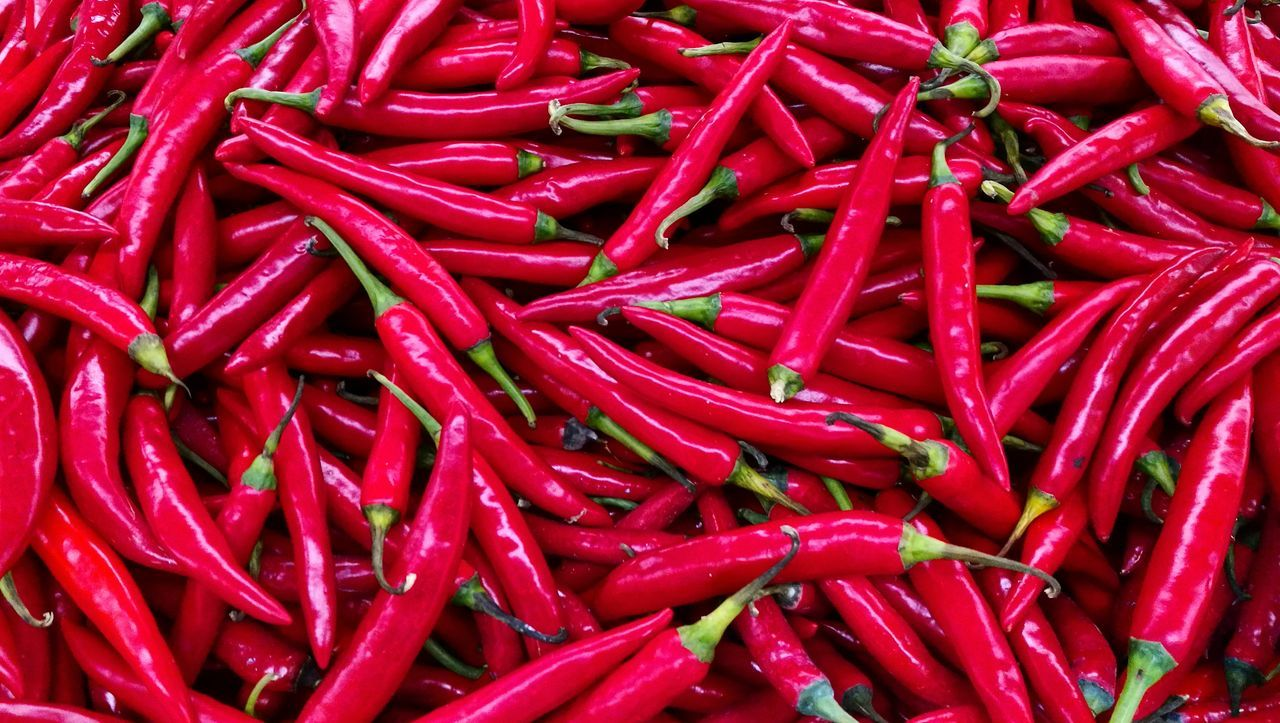 Chili  Red Red Chili Pepper Spice Freshness Food Full Frame Chili Pepper Food And Drink Large Group Of Objects Vegetable Backgrounds Healthy Eating For Sale Close-up No People Market Outdoors Day
