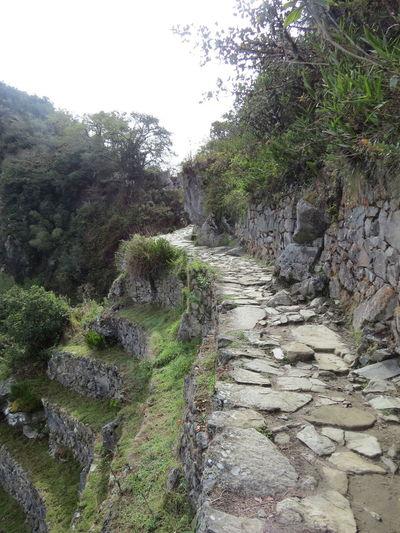 Ancient Architecture Ancient City Ancient Civilization Ancient Ruins Beauty In Nature Inca Inca Ruins Inca Trail Machu Picchu Machu Picchu - Peru Machu Picchu Sun Gate Peru Solitude Stone Sun Gate Tranquil Scene Travel The World