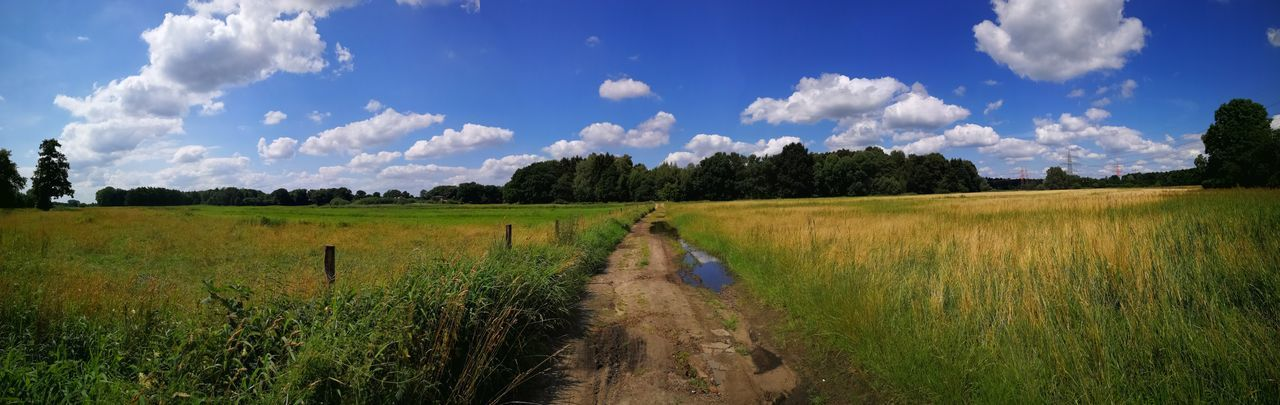 204/365 Bilsbek Panorama Field Cloud - Sky Cereal Plant Sky Landscape Nature Growth Outdoors Rice Paddy Scenics Tree Irrigation Equipment Beauty In Nature No People Sorcerer86 Huaweip10plus Huaweiography Eyeemkummerfeld Photooftheday Bilsbekblog Eyeemgermany Photo365