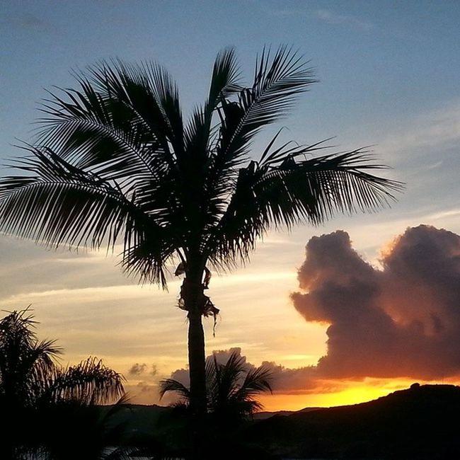 Sunset Bestbatmitzvahever Stthomas Lifeissweet @ricer_reish @lucy.reish