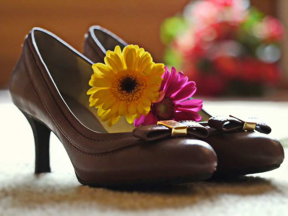 Pumps von Rockport® - Shoes for Walking - have a good night my friends Beauty In Nature Close-up Flower Flower Arrangement Flower Head Gerbera Daisy Indoors  Pumps Rockport Shoes