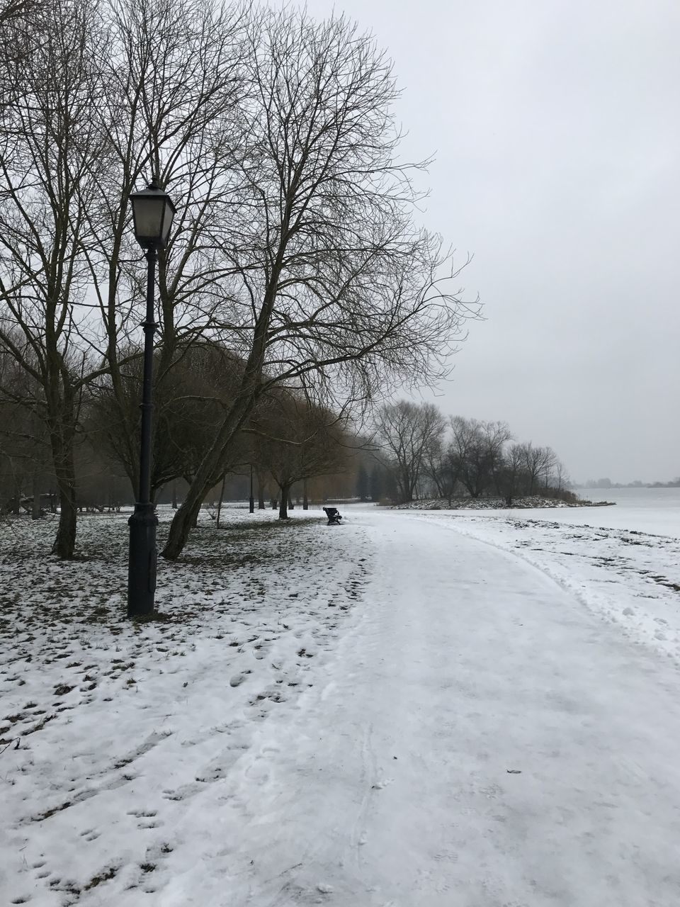 winter, cold temperature, snow, bare tree, weather, nature, cold, tree, frozen, outdoors, tranquility, beauty in nature, landscape, day, tranquil scene, scenics, road, sky, branch, no people, snowing