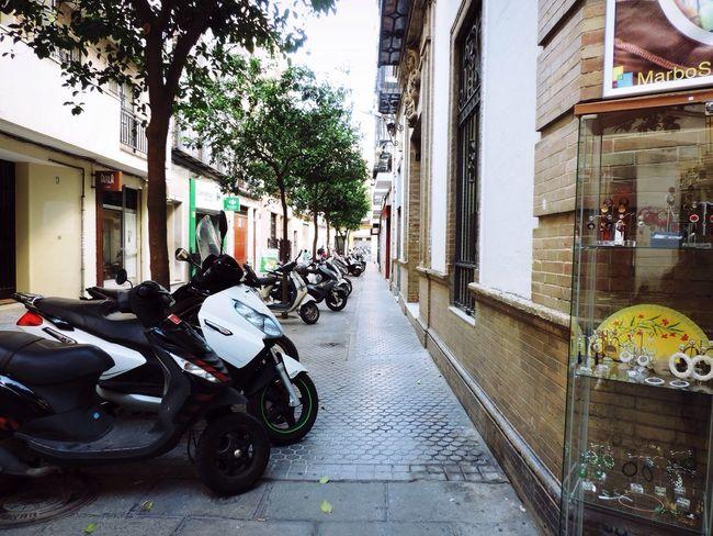 Mopeds Travel Down The Street Sevilla Feel The Journey