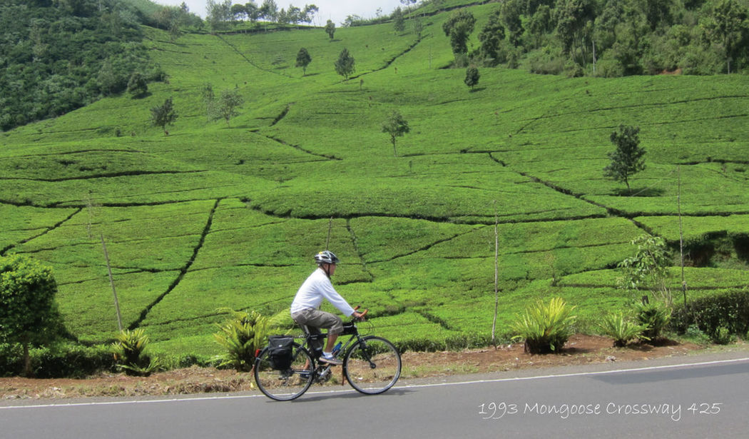 Bicycle Trip Bicycle Heaven