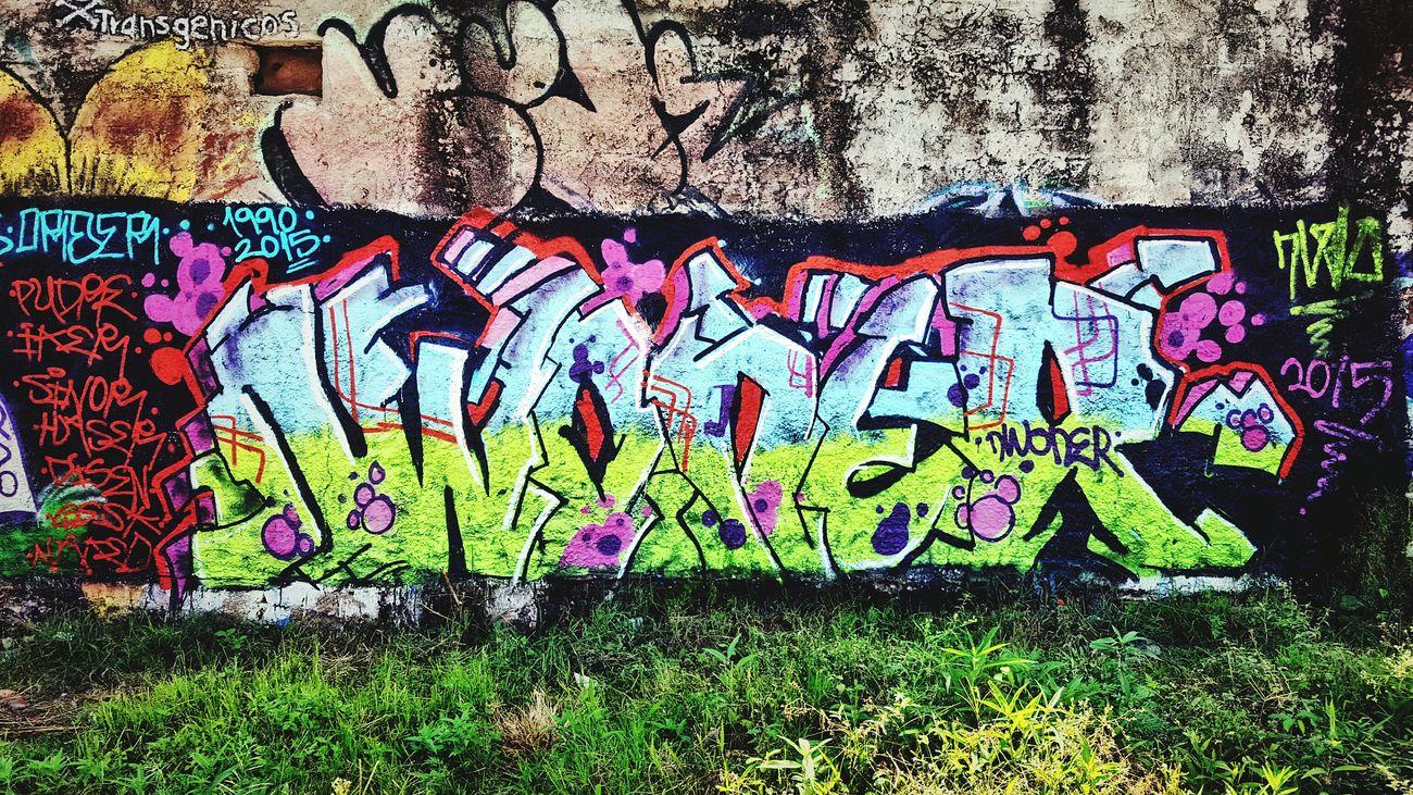 Graffiti Arte Urbano . Exprwsion en muros. Photo By Agustín Orozco Díaz - 2015