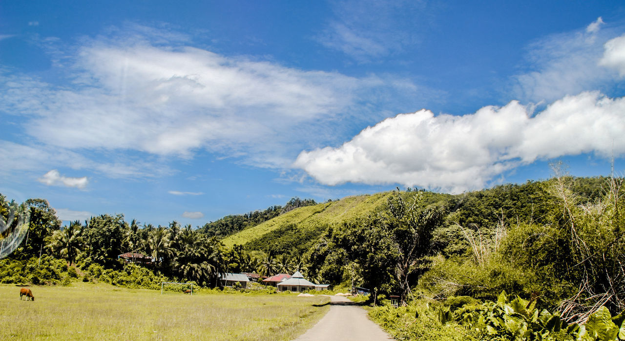 Landscapes With WhiteWall Bukik Maombiak 1600 DPL, Suliki Sumateta Barat EyeEm Best Shots - Nature Panoramic Photography Minangkabau Rancak Clouds And Sky Variation Green Grass Greenland Blue Sky