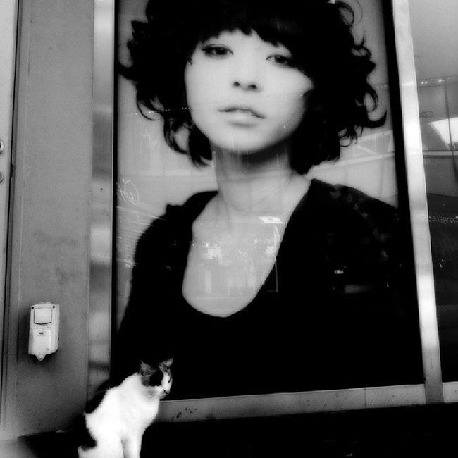 "Storyoftheday ""Forsaken Love"". This is my Juliet ♡♡♡ Cat Catstagram Kitty Instacat Instameow Meow Allshots_ Artthursday Artphoto_bw Bws_artist_asia Bwstylesgf Bnw_life Bnwalma Bnw_worldwide Bws_worldwide Bnw_captures Bws_streets Bw_singapura Cafe_noir Dailythemes Gang_family Gf_daily Jj  Streetbw singapore instagram webstagram ic_thestreets igcreative"