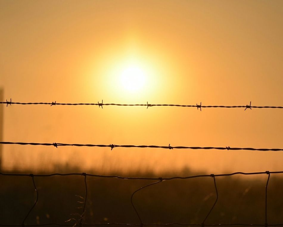 smokey Oroville, CA. Wish the fires would let up can't take another evacuation. Sunset Barbed Wire Sun Silhouette Dramatic Sky Sunlight Nature Razor Wire No People Beauty In Nature Connected By Travel EyeEm Gallery EyeEm Best Shots Eyeemphotography Countryside Glamour Smokey Smoked Out Fireskysunset