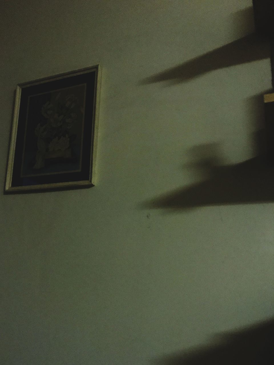 indoors, shadow, no people, home interior, architecture, day, bird, close-up