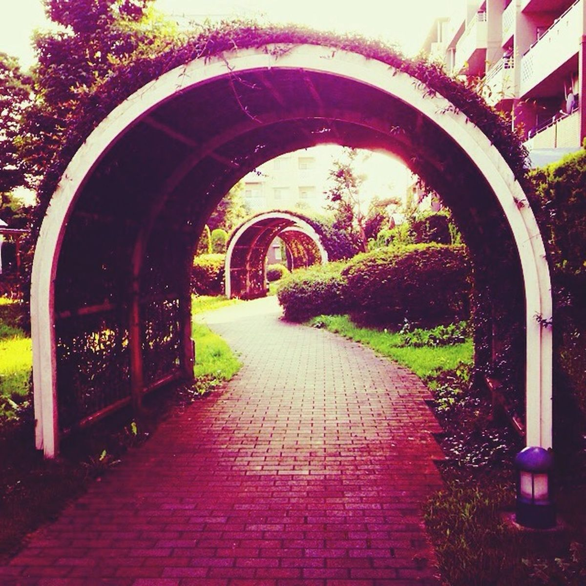 The arches Japan Inzai