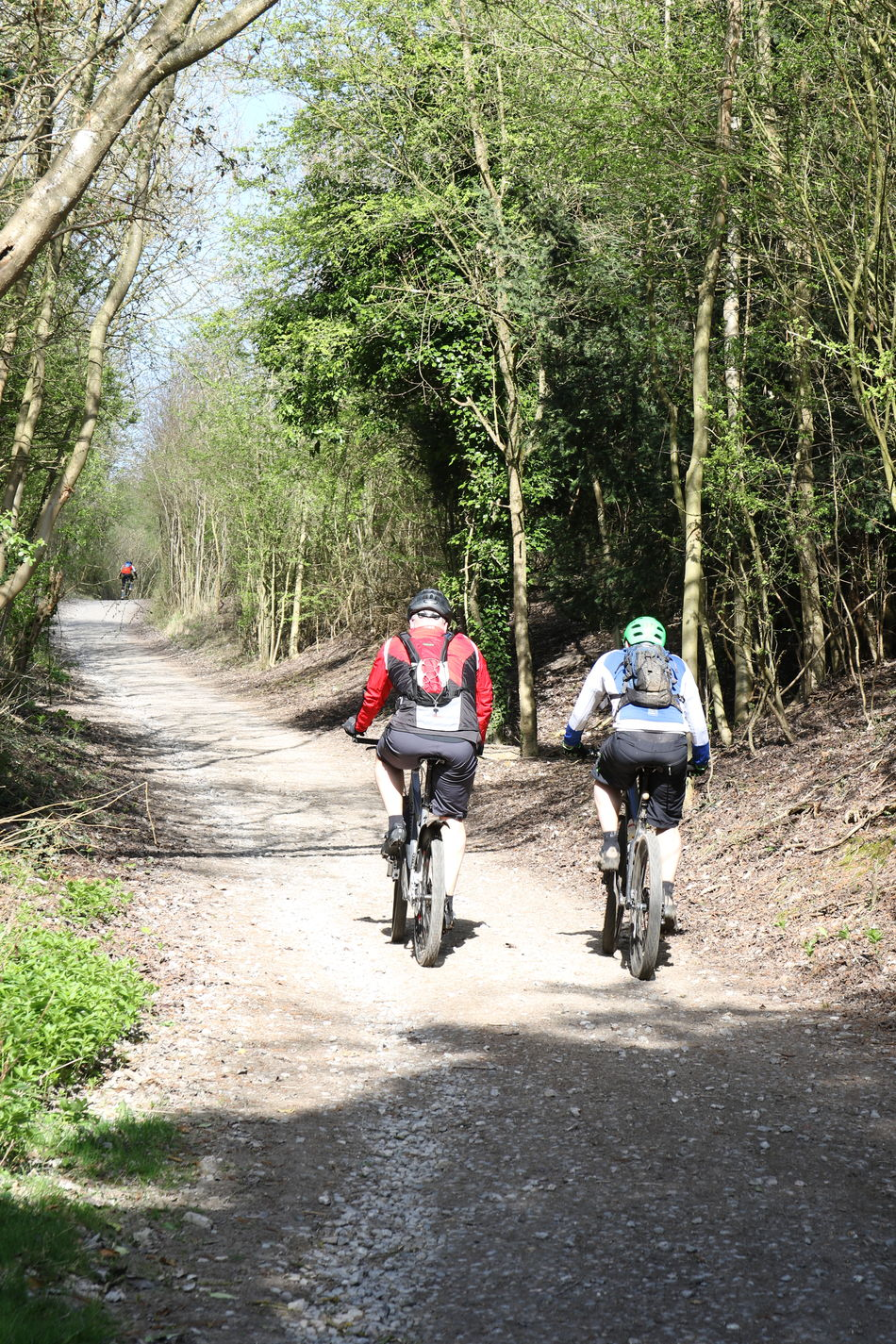 Bicycle Biker Byway Cycling Cycling Helmet Headwear Healthy Lifestyle Leisure Activity Lifestyles Men Mountain Bike Nature Newlands Corner North Downs Outdoors Real People Riding Surrey Countryside Transportation Travel Tree Two People Vacations