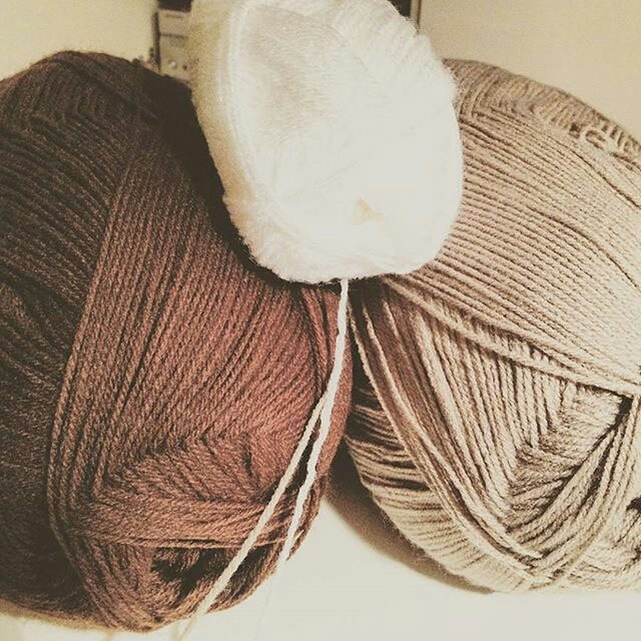 indoors, no people, close-up, wool, day