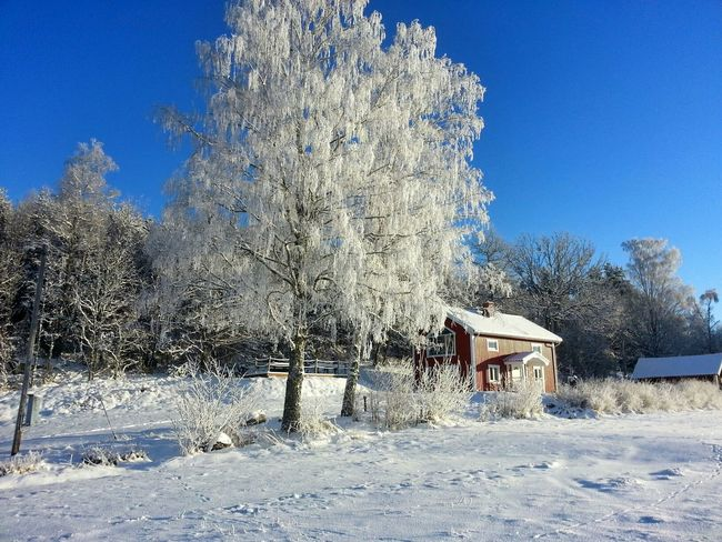 House Winter Coold Sweden