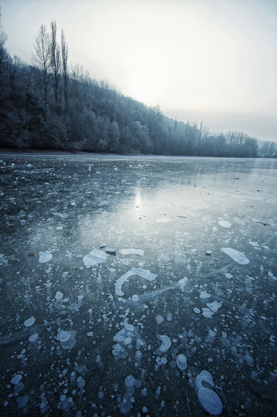Frozen lake in Prasnik-Vrbove, Slovakia. Beauty In Nature Bubbles Cold Cold Temperature Day Frost Frozen Frozen Lake Frozen Water Hill Ice Lake Landscape Nature No People Outdoors Seasonscollection Sky Snow Tree Water Weather Winter