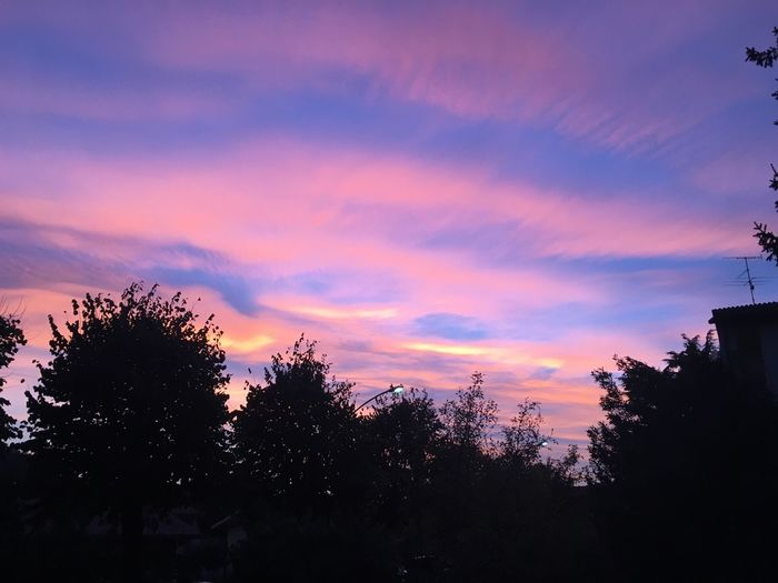 Sunset lover 🌅 💕 sSunsettTreesSkybBeauty In NaturenNaturenNo PeopletTranquilityoOutdoorscCloud - SkygGrowthsScenicsdDay