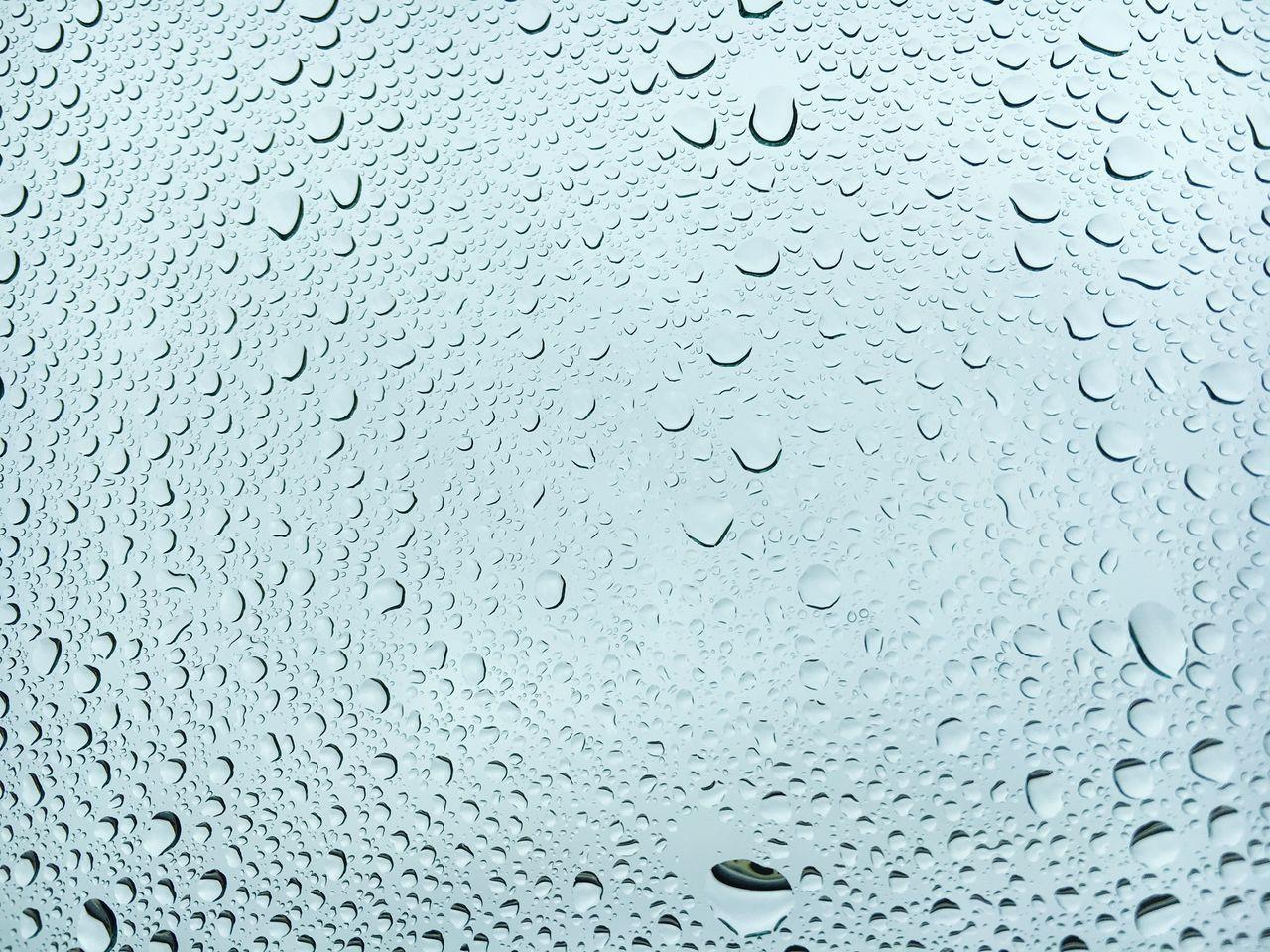 Beautiful stock photos of regen, Backgrounds, Close-Up, Drop, Full Frame