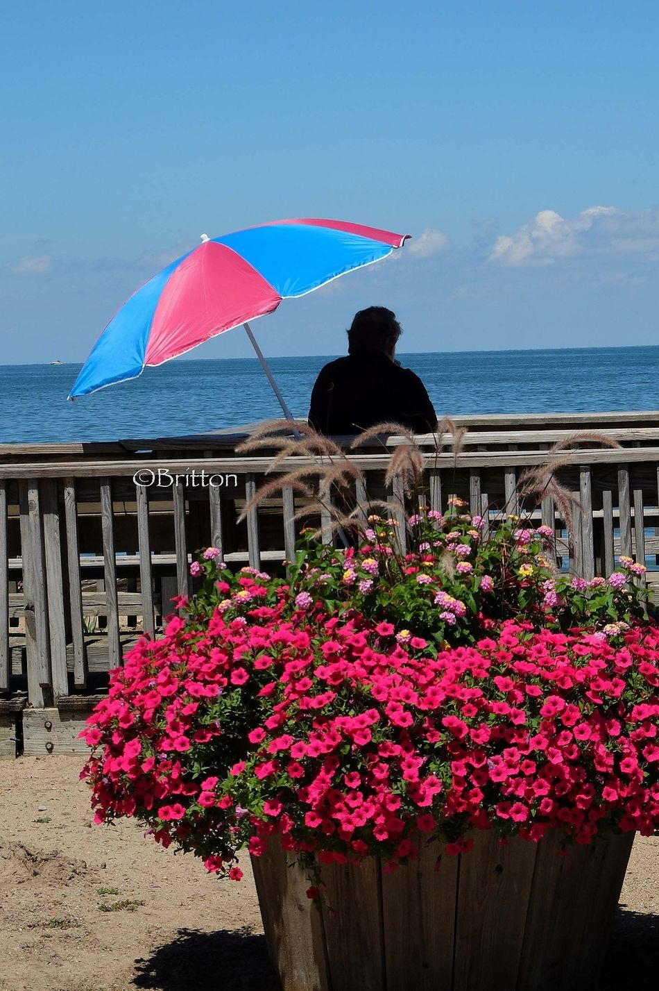 Solitary man relaxing by the beach on Lake Lake Erie Water_collection Flowerporn EyeEm Nature Lover