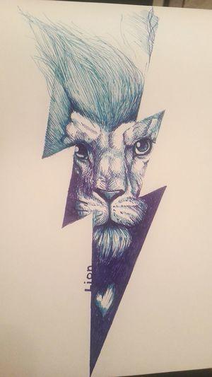 Sketch Art Animal Drawing Lighting Lion Ulan-Ude This Is PAINT