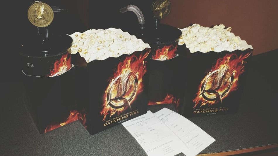 catching fire Movies