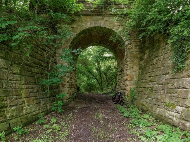Amongst nature Arch Architecture Built Structure Countryside Eye4photography  Panasonic Lx100 Beauty In Nature Trees Green Stone Material Stone Outdoors Green Color MTB Biking Mountain Bike Cycling Mountain Biking Bridge Bridge - Man Made Structure