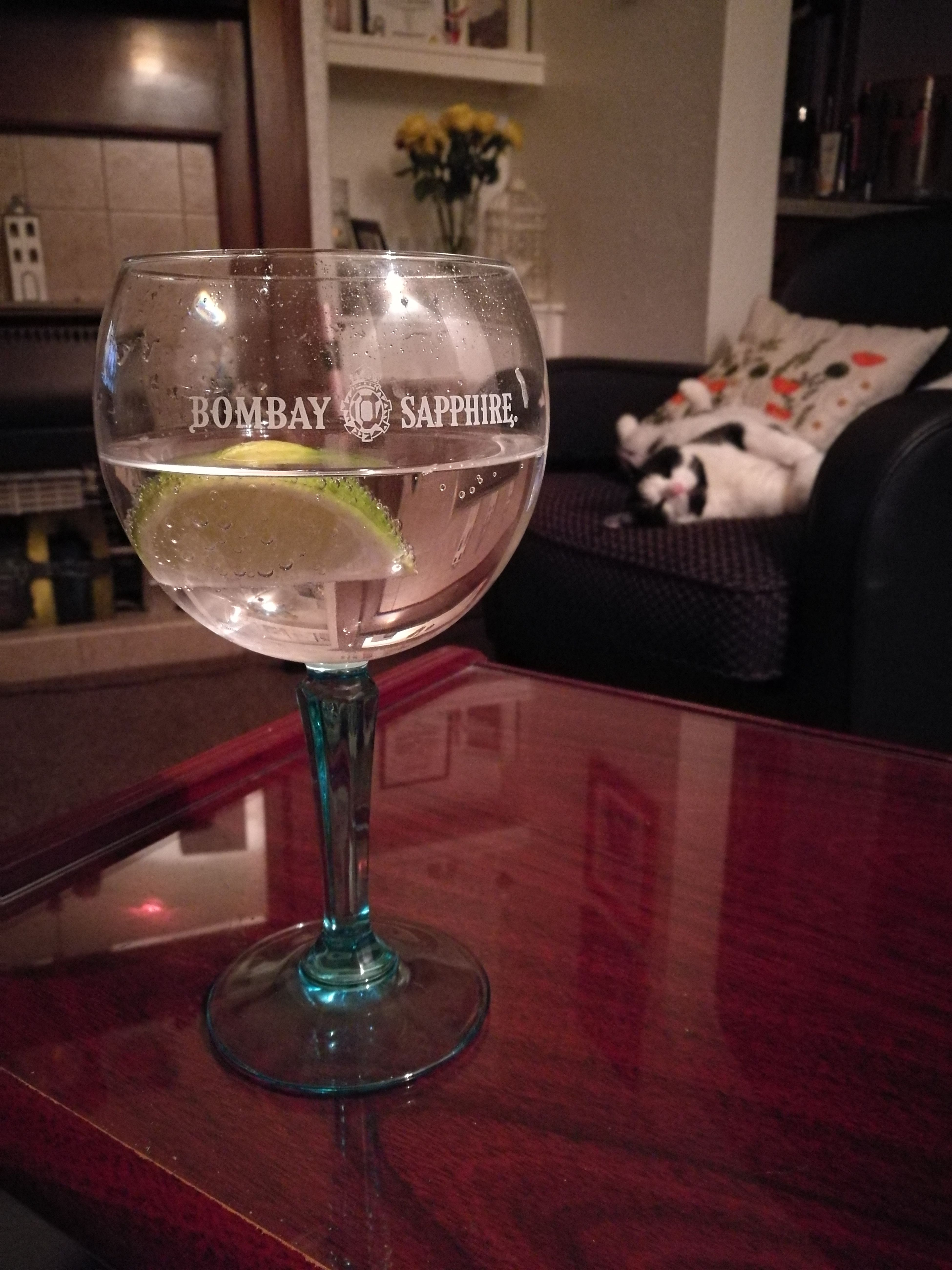 Girlsnightin Just Me And My Cat Movies Films Snug Cosy Cat Kitty Cat Sleepy Kitty Gin And Tonic GIN Tonic Bombay Sapphire Lime TasteSensation Home Sweet Home Homeiswheremyheartis