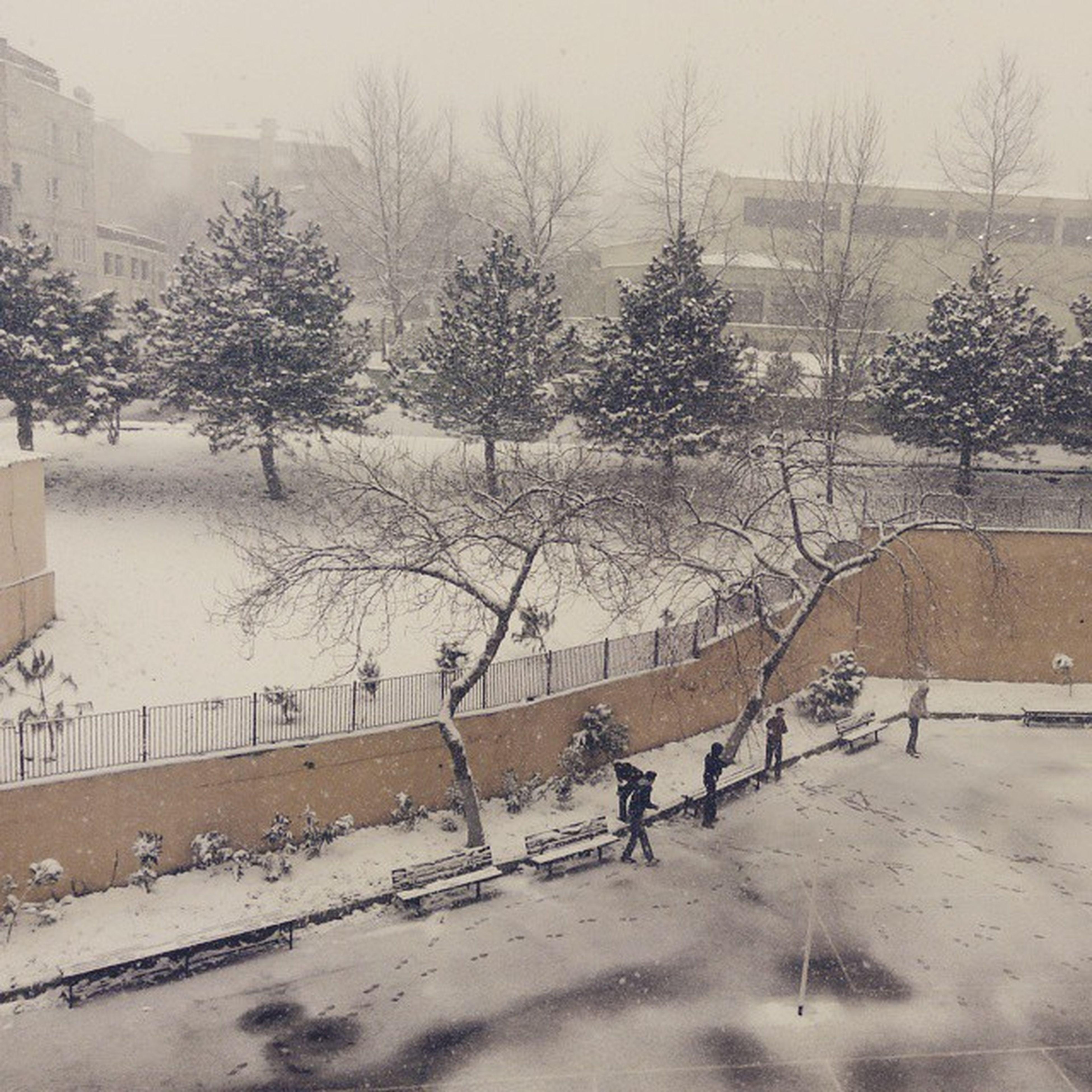 Avpal Snow School Day excellent