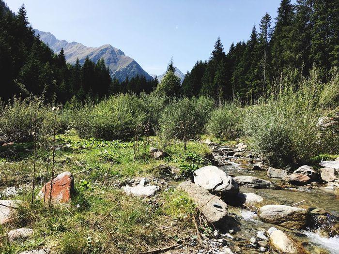 Natur Österreich Wasser Wildbach Creek Sellrain