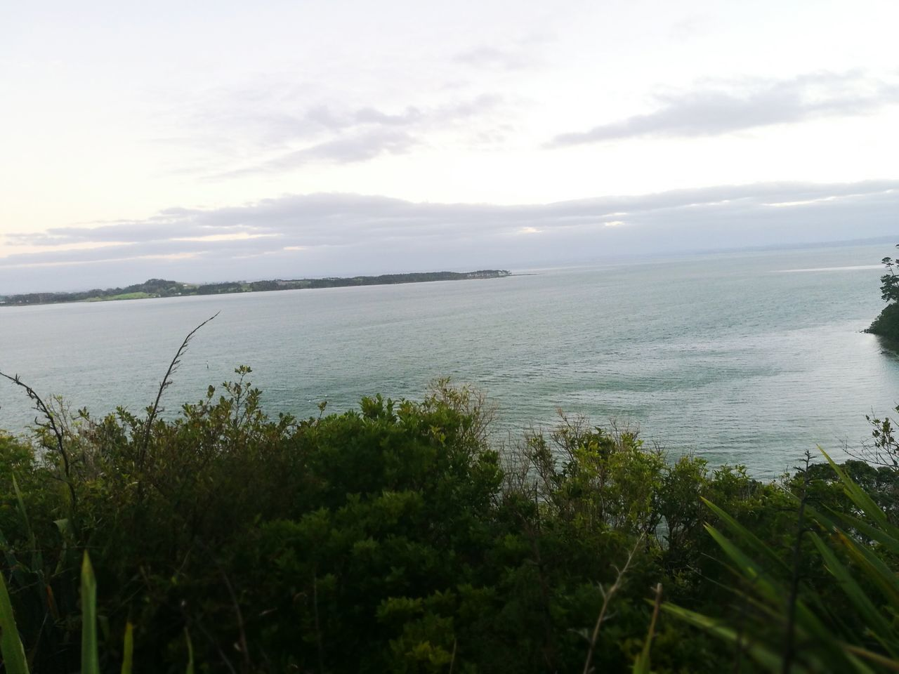 Westauckland Lookout Beautiful Peaceful Nature Nature Sea Horizon Over Water Growth Beauty In Nature Sky Tranquility Outdoors Scenics Water Plant Grass Cloud - Sky Day Landscape Mountain Tree No People