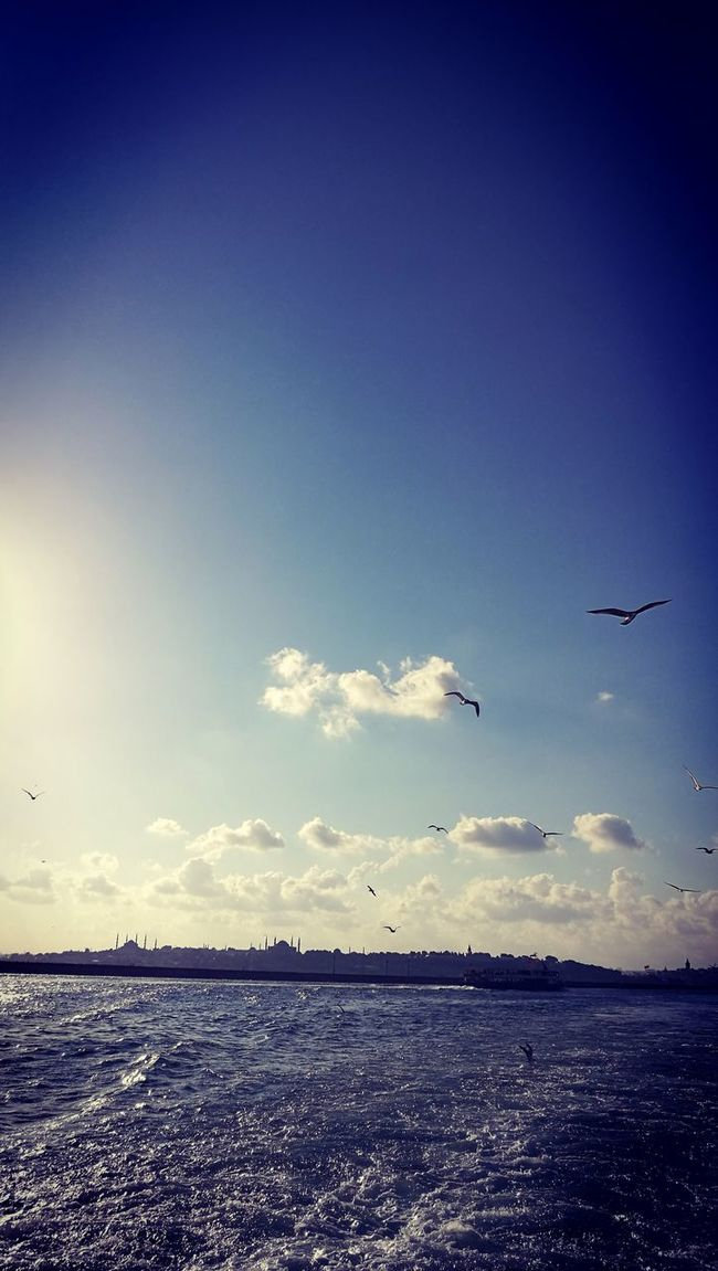 Blue in İstanbul Water Blue Sea Sky Flying Cloud Seascape Beauty In Nature Waterfront First Eyeem Photo