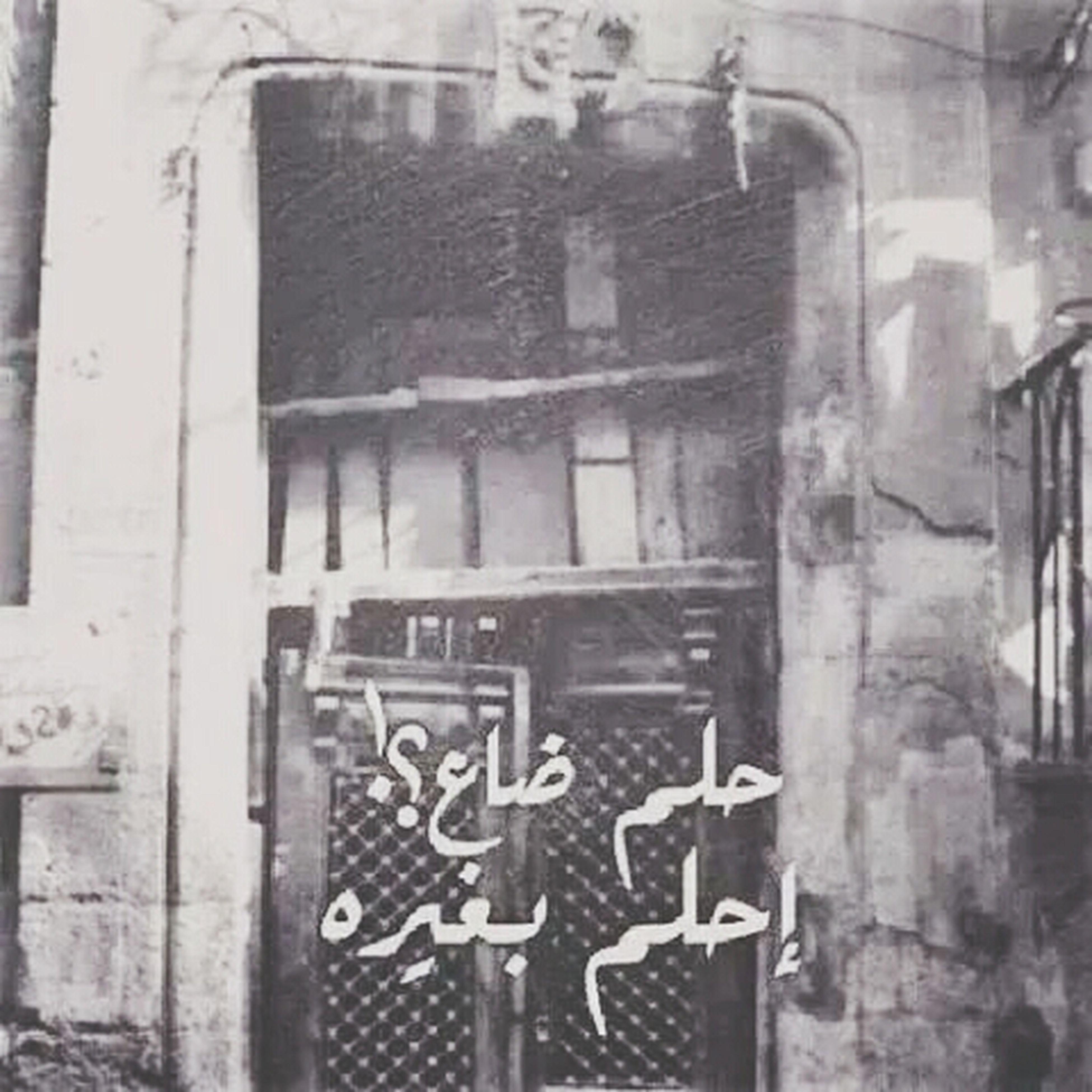 Mohamed Sheka First Eyeem Photo