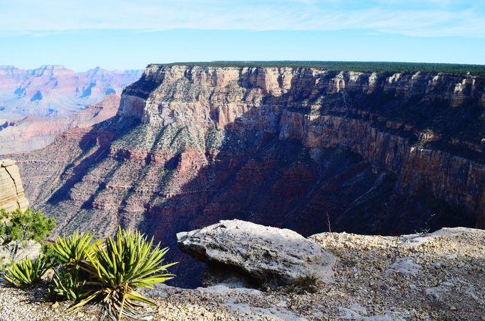 Grand Canyon South Rim No People