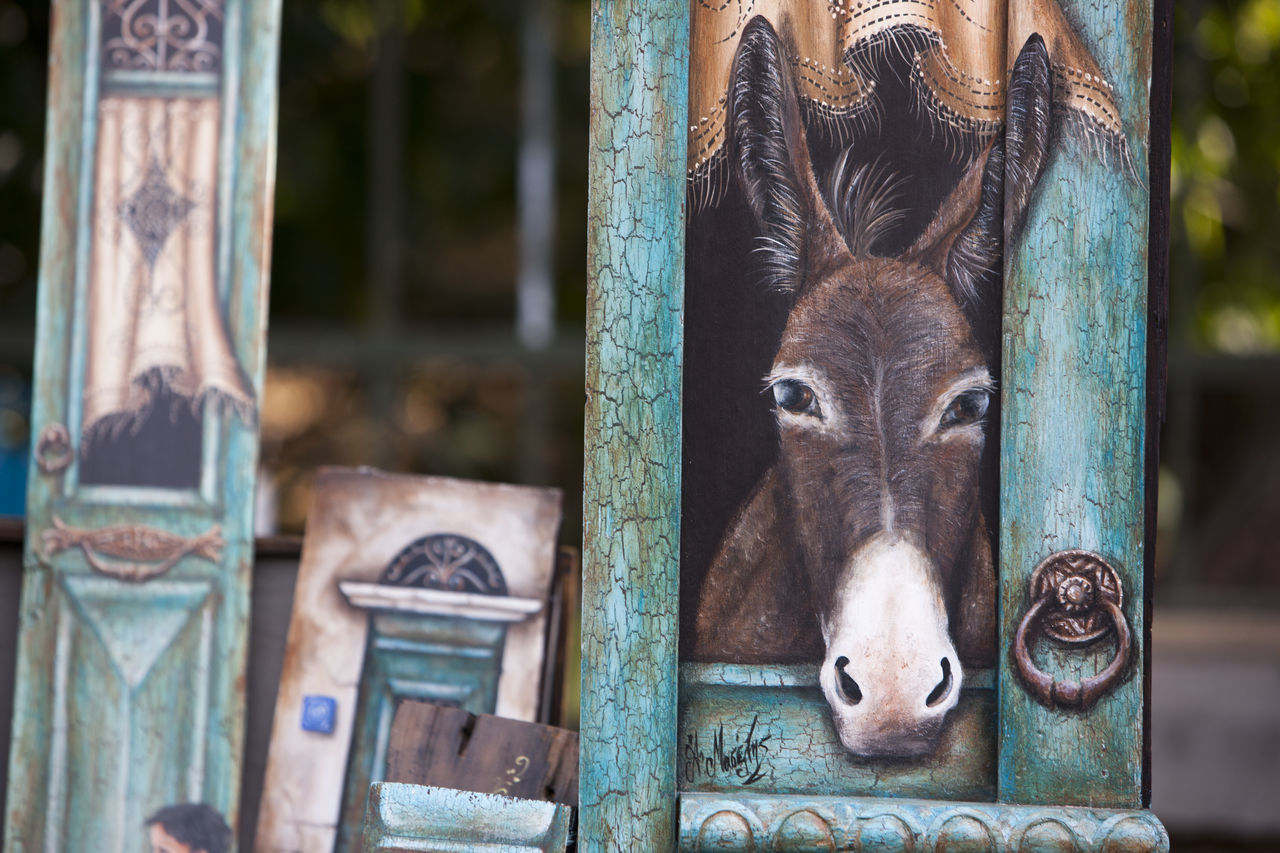 Animal Head  Animal Themes Art Cultures Domestic Animals Donkey Mammal Market Painting Thiseio Window